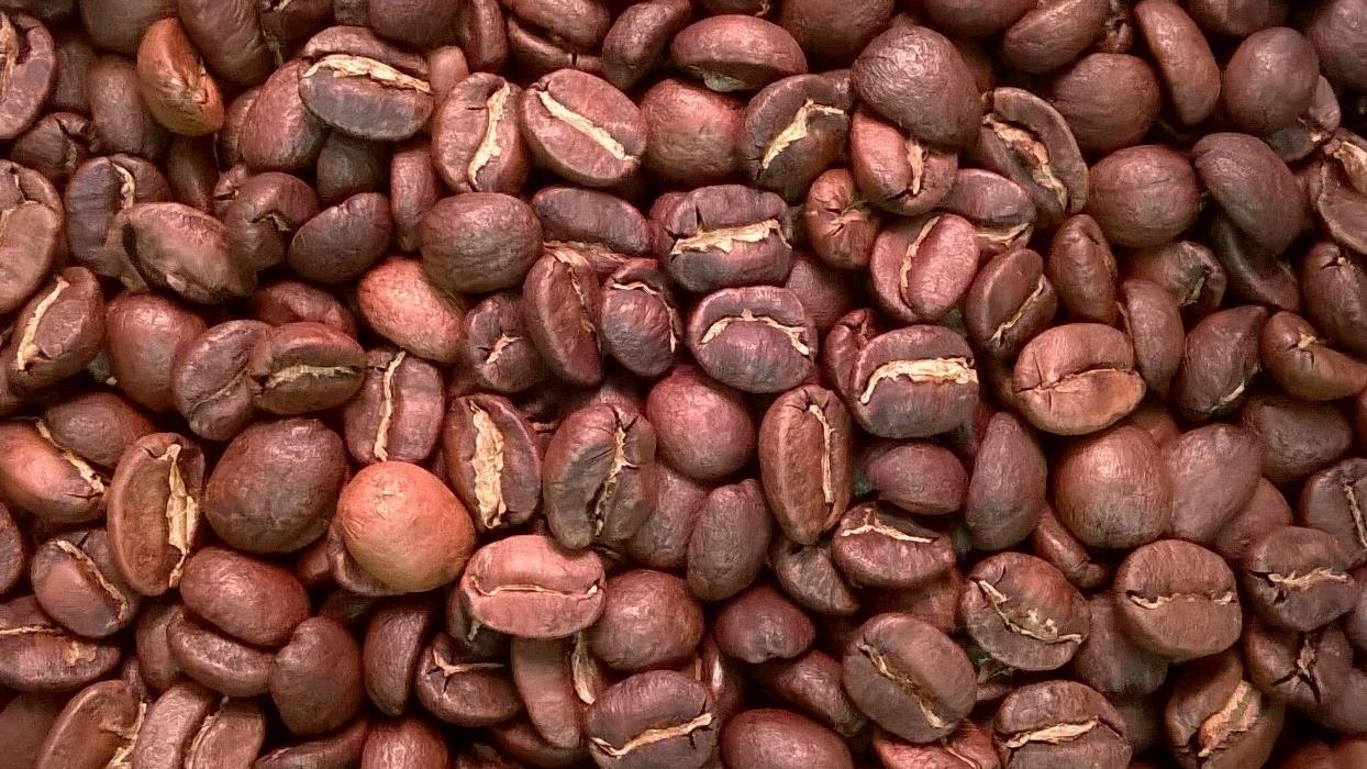 Panama by The Coffee Roaster
