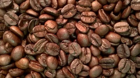 Brazil by The Coffee Roaster