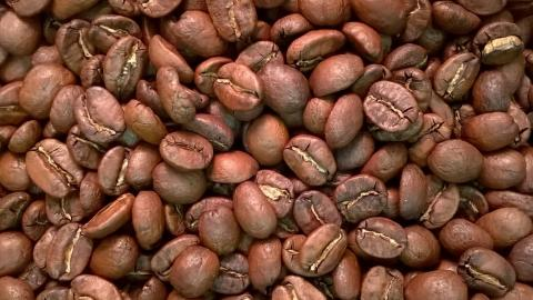 Costa Rica by The Coffee Roaster