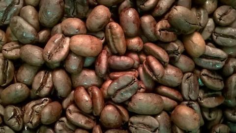 Decaf Peru by The Coffee Roaster
