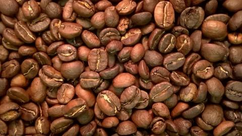 Guatemala by The Coffee Roaster