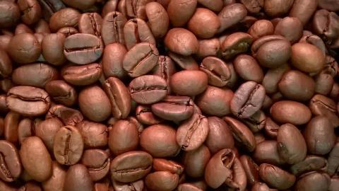 Malabar by The Coffee Roaster