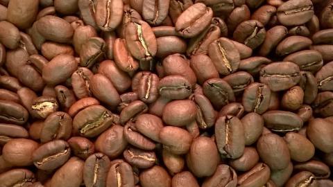 Peru by The Coffee Roaster